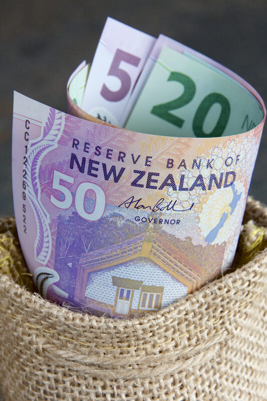 What can we Learn from the RBNZ?